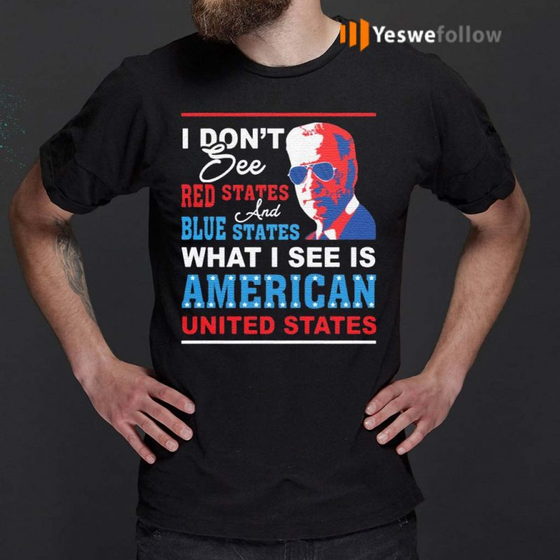 I-Don't-See-Red-States-and-Blue-States-I-See-American-United-States-T-Shirt