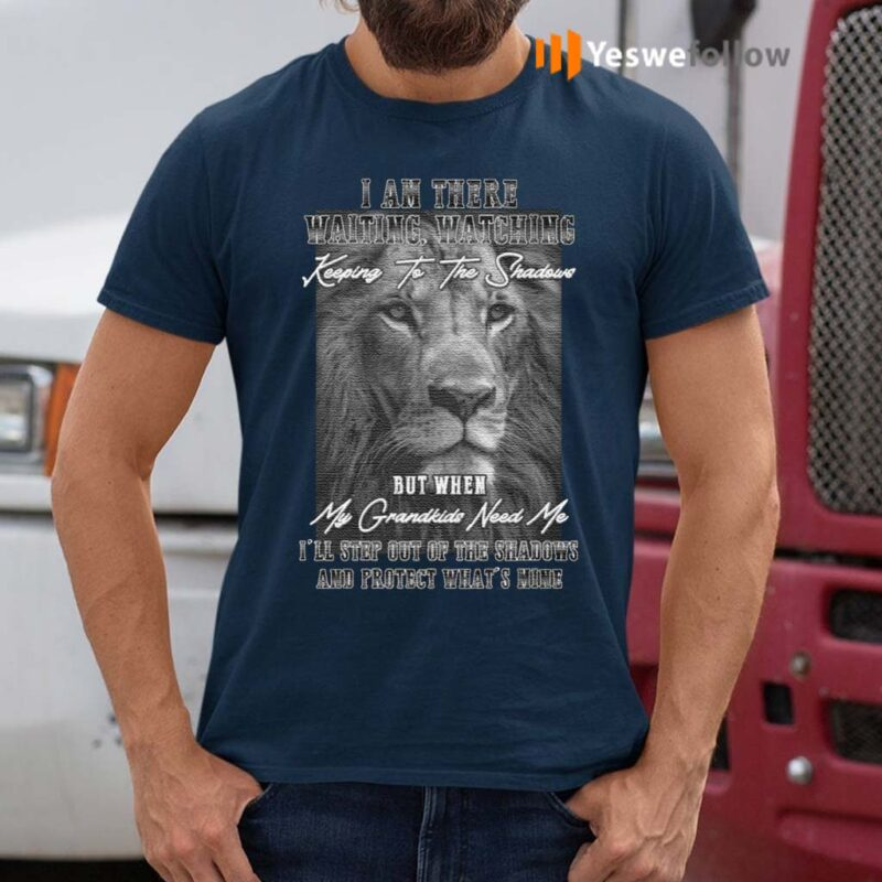 When-My-Grandkids-Need-Me-I'll-Step-Out-Of-The-Shadows-And-Protect-What's-Mine-Print-On-Back-Only-T-Shirts